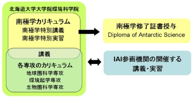 Structure of the IAI Curriculum